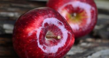 Elmanın 40 Faydası